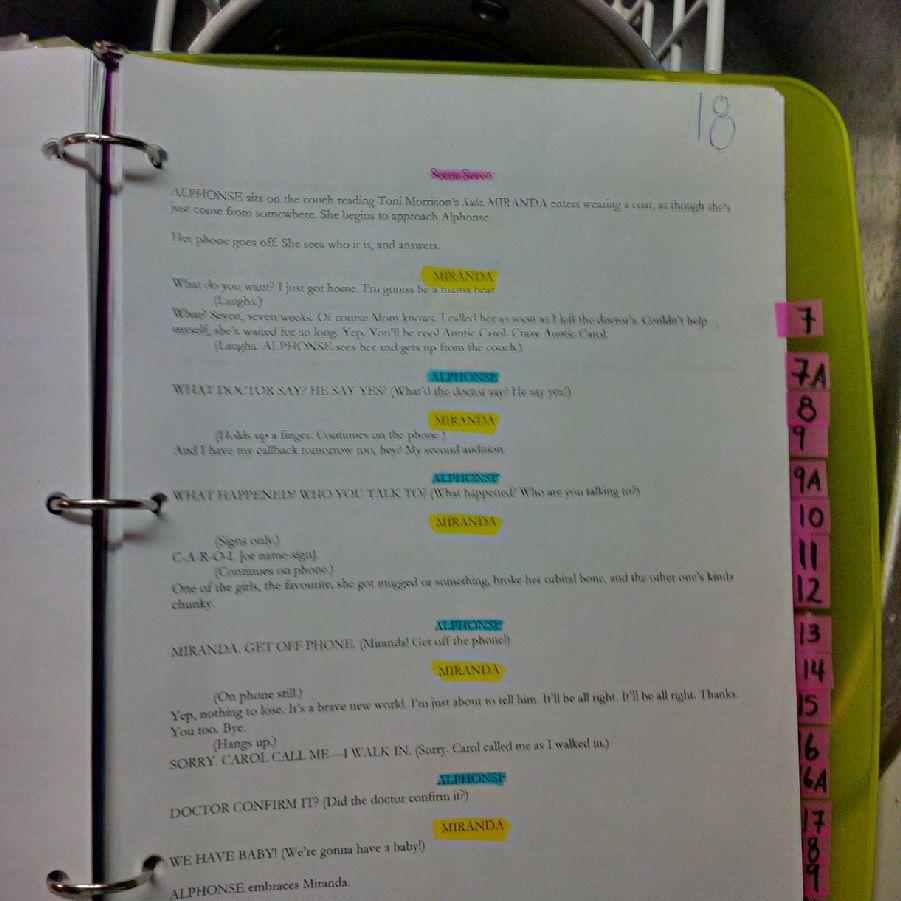 Interpreter script scene markings